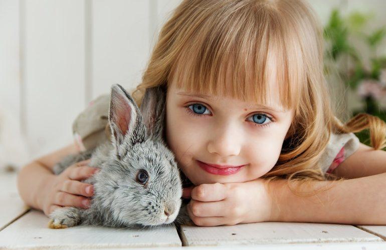 L'educazione animalista entra nelle scuole.