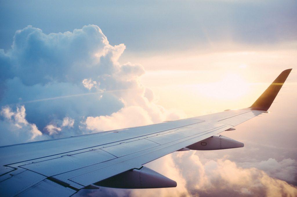 Delta Airlines avvia un progetto: gli  animali da compagnia non viaggeranno più in stiva