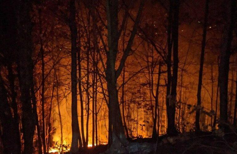 Incendio l'Aquila, le inquietanti ombre dell'Ecomafia