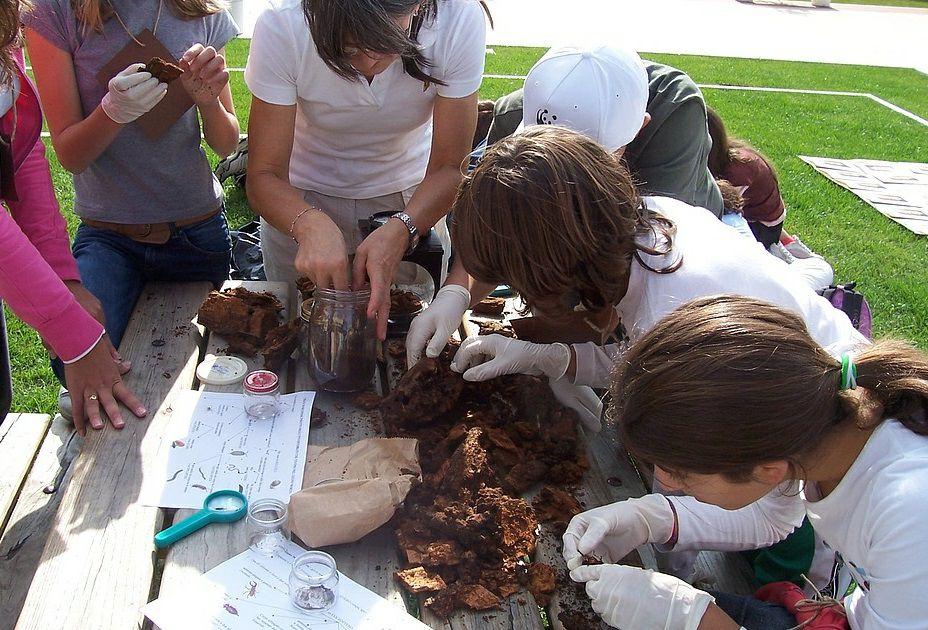 Abruzzo e Scuola: la settimana dell'educazione ambientale del Wwf