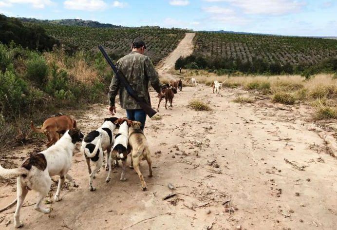 Abruzzo e la caccia in zona rossa: continua lo scontro tra ambientalisti e cacciatori
