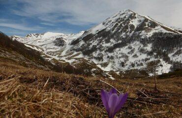 Abruzzo: associazioni e cittadini contro la riduzione del Parco Sirente Velino