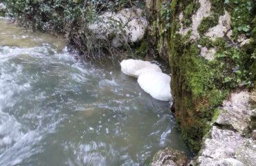 """Forum H2O: """"Situazione vergognosa sul Rio Gamberale e nelle Grotte di Stiffe"""""""