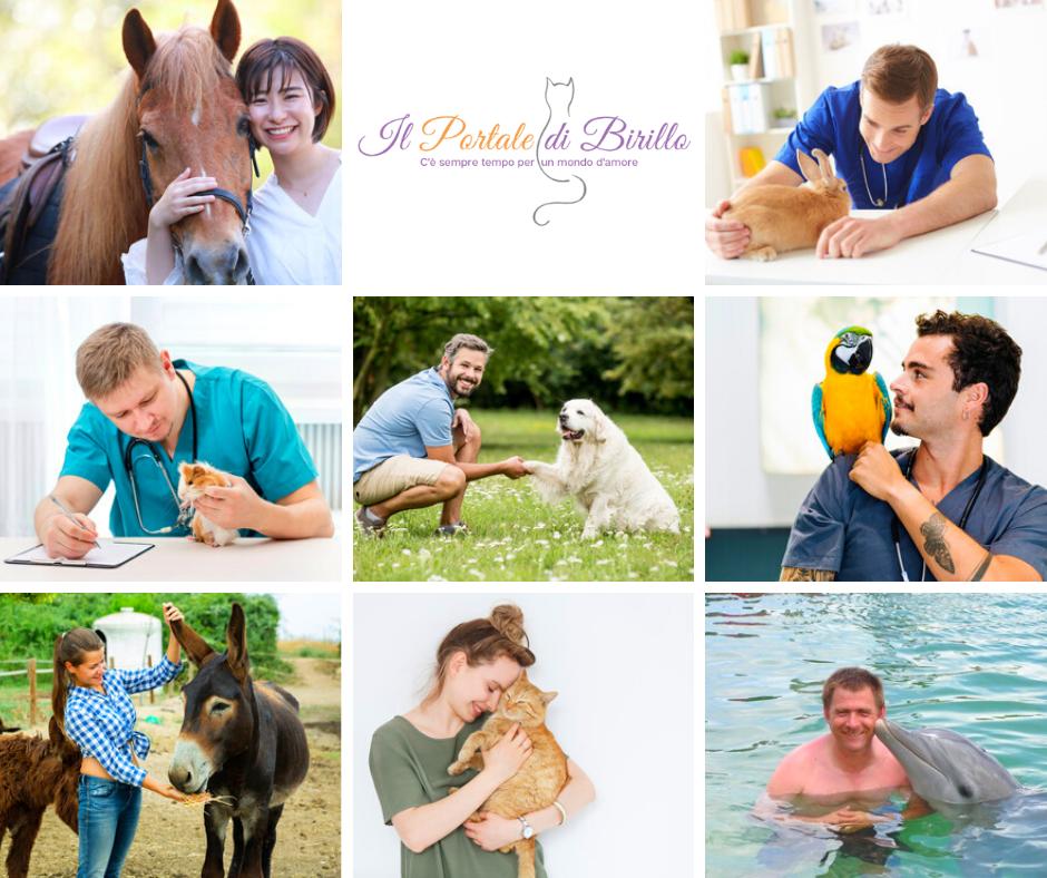 Educatore per gli Animali