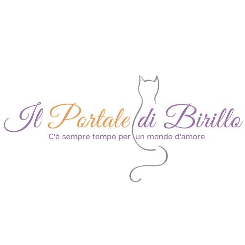Il Portale di Birillo