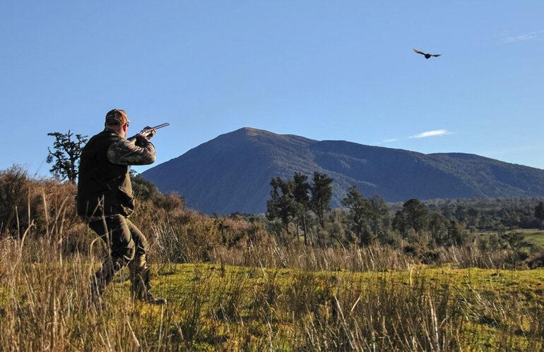 ll Tar accoglie ricorso ambientalisti, stop alla caccia fino all'8 settembre in Abruzzo